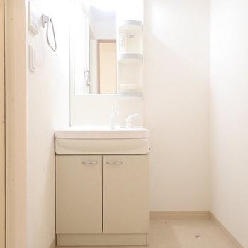 洗面台のとなりには収納を置けます!タオルなどを。