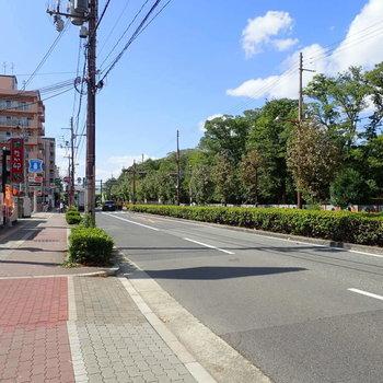 周辺環境】大通り沿いにあり、交通量は多かったです。