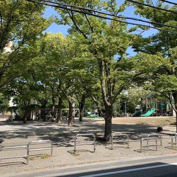 お部屋の目の前は緑豊かな公園。気分転換に良さそう。