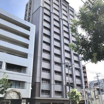 15階建ての大きなマンション!