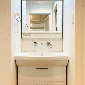右手には洗面所。鏡の裏は収納に。(※写真は4階反転間取り別部屋のものです)