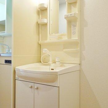 キッチン横にドーンと洗面台。(※写真は8階の同間取り別部屋のものです)
