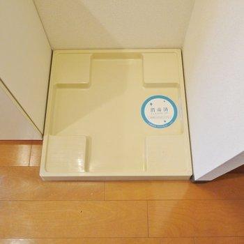 洗面の横に洗濯パンもありました。(※写真は8階の同間取り別部屋のものです)