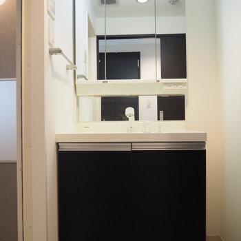 鏡が大きな洗面台つき(※写真は8階の反転間取り別部屋のものです)