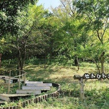 近くには森林豊かな浅間山公園!