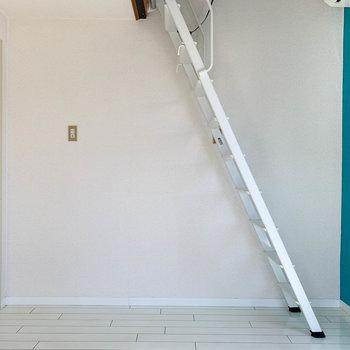 キッチン側はシンプルな壁。