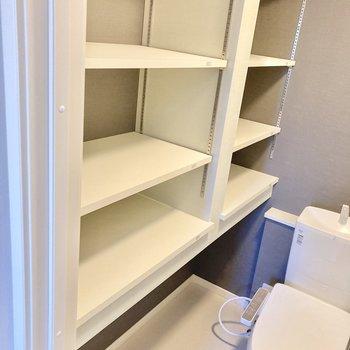 横には可動式の棚がついているので、猫ちゃんのトイレ用品も置いて置けます。