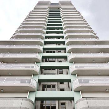 見上げると……!この高さ、建築好きにはたまりません。