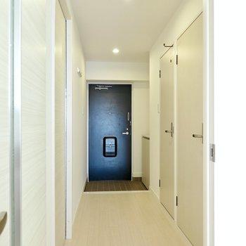 廊下にはその他の水回りともうひとつ洋室が。