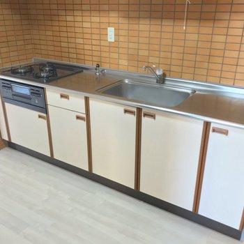 かなり広い作業スペース!食洗機も置けそうですね。