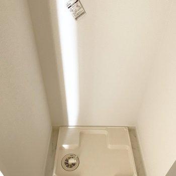 脱衣所に洗濯パン(※写真は6階の反転間取り別部屋のものです)