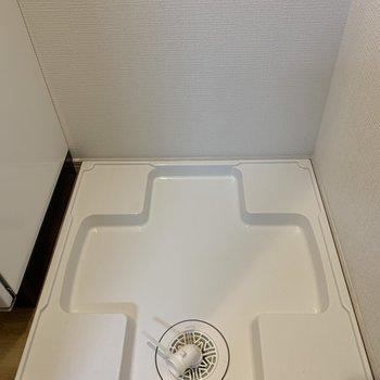 洗面台のお隣には洗濯機