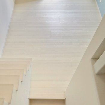 見下ろして家具の配置を考えるのも楽しい。つづいて、下の階段をくだります。
