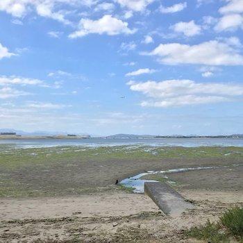 進むと和白干潟がありました!空と海の境目がはっきり見えますね。