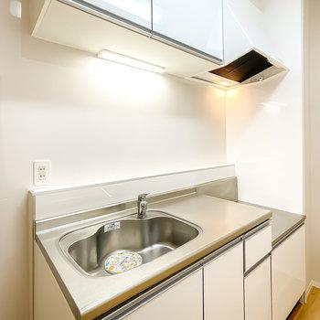 コンロは持ち込み式ですが、シンクも作業スペースも広く、壁にはスパイスなどが置けるスペースも!