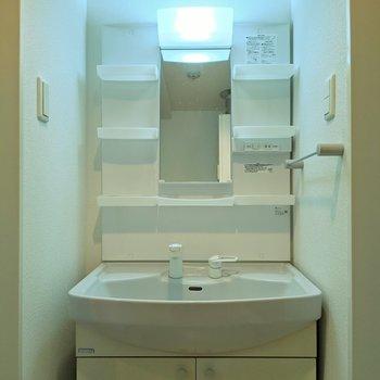 洗面道具を分けて収納できそうです。