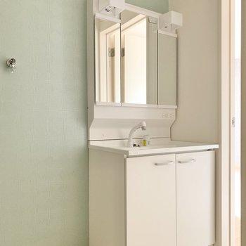 鏡裏が収納になっているタイプ。隣は洗濯機置場。