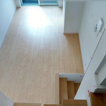 ロフトがあるので、居室は広々使えますね。1番下の水周りへ。