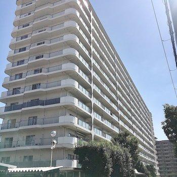 白くて大きなマンションです。