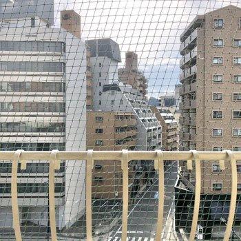 バルコニーにはネット付き。向かいの建物とは距離があるので、光・風通しは良好ですよ。