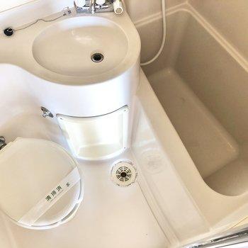 掃除はシャワーでまとめ洗いが可能なの。