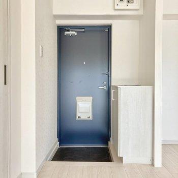 玄関は1段低くなっています。ホコリも入りにくいですね。