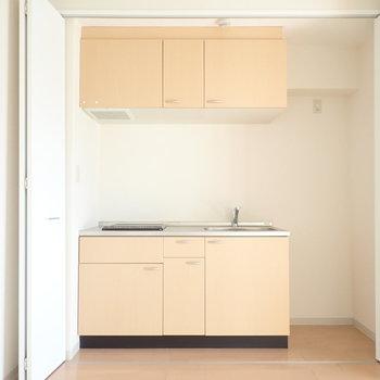 キッチンは居室のとびらの中に隠れていました!