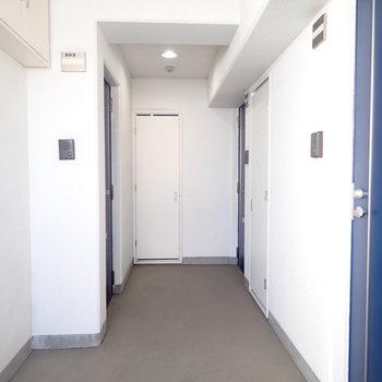 共用部】光の入る明るい廊下でした。