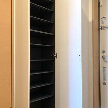 シューズボックスは一人暮らしに十分な容量。