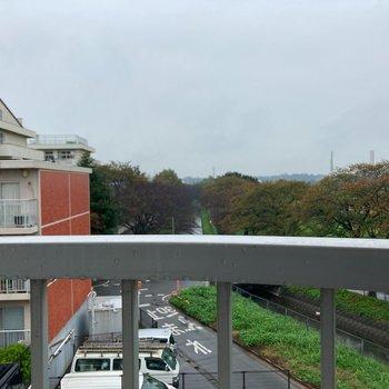 【4.5帖から】緑が見えて心地よい眺望です。