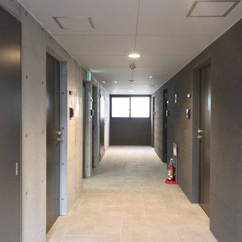 共用廊下は室内でとてもきれい。