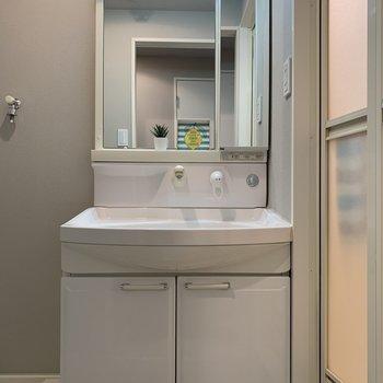 シャンプードレッサー付きの洗面所。洗い場は広く快適そうでした!(※写真は別部屋のものです)