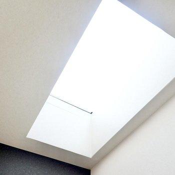 なんと天窓があるんです!晴れた日なら自然光だけで過ごせそうです。