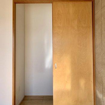 【洋室①】ウォークインクローゼット。この洋室の広さでも、頼りになる。