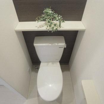 お手洗いには棚が。グリーンを置いて生き生きした空間に