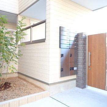 【共用部】宅配ボックスがあります。小さな木も。これから大きくなるのかなあ。