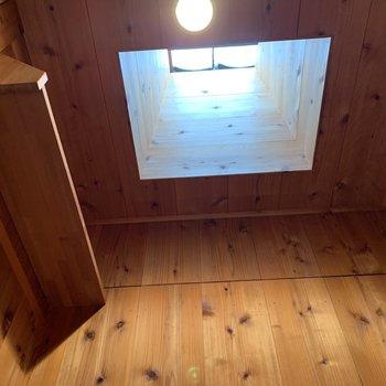 トイレの上はお空。収納スペースもありました。