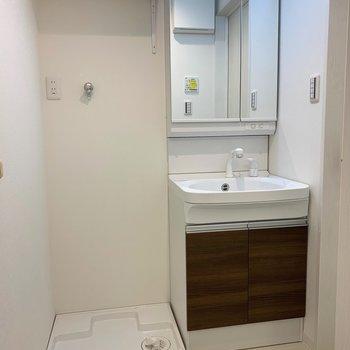 洗濯機置き場の横に洗面所。シャンプードレッサー付きですよ