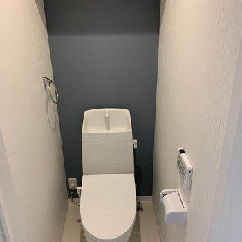 トイレの上には収納。ちょうど、トイレットペーパーと掃除用具が置けそうでした