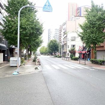 周辺環境】駅から歩いたらすぐ着きました。いちょう並木の街路樹を抜けて…。