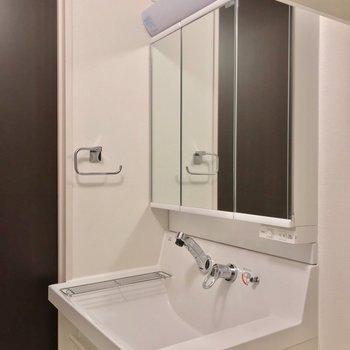 洗面台には大きな鏡付き。朝の支度もラクラクです◎(※写真は2階の反転間取り別部屋のものです)