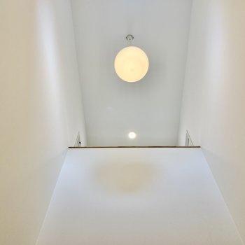 天井を見上げるとこの高さ。開放感あるな〜。