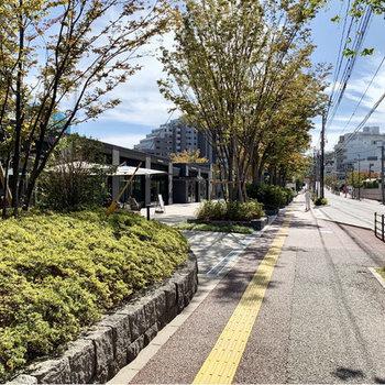 近くにはグリーンのステキな通りが。テラス席の気持ちいいカフェも隣接されていますよ。