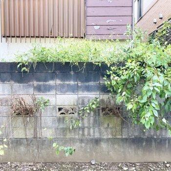 眺望は塀です。敷地内に面しているので外からの視線などは気になりませんでした。