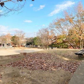 お部屋近くには公園もあり、とてものどかな印象です。