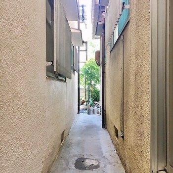 外はお隣さんも使える細い通路があります。