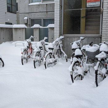 駐輪場は屋外なので天候の影響を受けそうです。