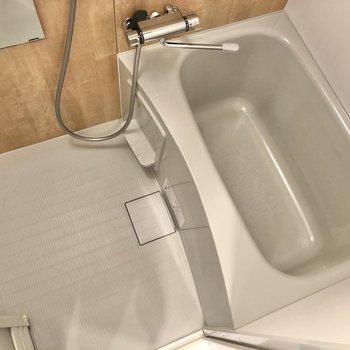 洗い場スペースも確保されています。