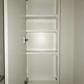鏡の裏を有効活用できますね※写真は4階の同間取り別部屋のものです