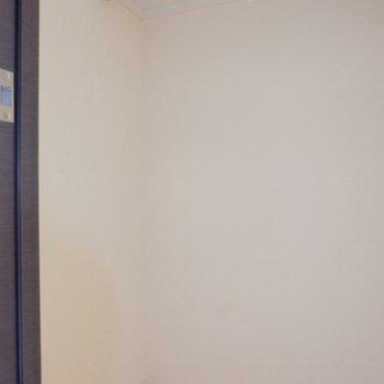 そして廊下にもクローゼットがありました!仕事用と分けてもいいですね!(※写真は9階の同間取り別部屋のものです)